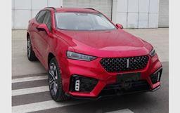 定位轿跑风格SUV  曝WEY VV7 GT申报图